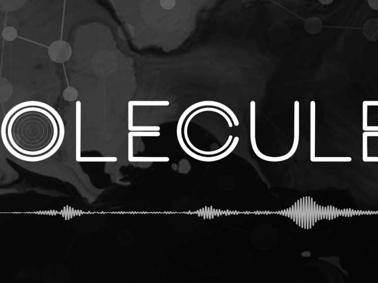 Molecules-Something-Inside.jpg